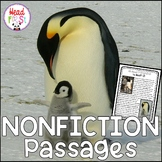 FREEBIE Penguin Nonfiction Guided Reading Comprehension and Fluency Passage