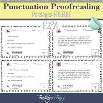FREEBIE - Proofreading Passages