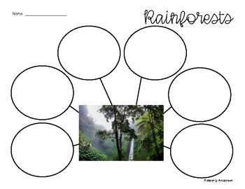 "FREEBIE: ""Rainforest"": Reading Response Graphic Organizer"