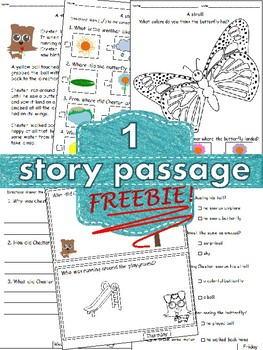 FREEBIE Reading Comprehension 1 Story