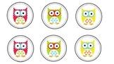 FREEBIE!! Reading Level Owls