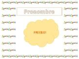 FREEBIE - PRONOUN ACTIVITIES (Spanish Version)