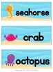 FREEBIE - Sample Unit for Preschool - OCEAN WEEK