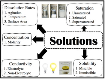 FREEBIE: Solutions Graphic Organizer Poster