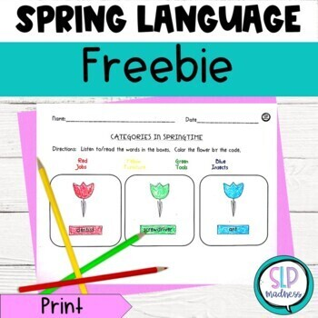 FREEBIE!  Spring Language-Categories and Wh Question activities