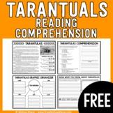 FREEBIE - Tarantulas Reading Passage and Comprehension