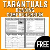 FREEBIE - Tarantulas Reading Passage and Comprehension
