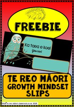 FREEBIE!       Te Reo Māori..... Ka taea e koe! (You can)