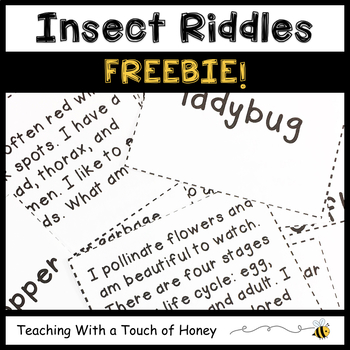 Insect FREEBIE: Tiered What Am I Riddles