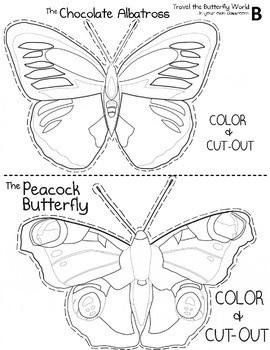 FREEBIE Wild About Butterflies