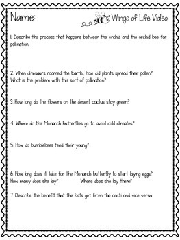 FREEBIE! Worksheet to Accompany WINGS OF LIFE Documentary **FREE**