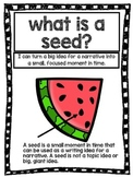 FREEBIE Writer's Workshop Seed Lesson - mini unit preview