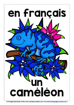 FRENCH FOR CHILDREN - 20 ANIMALS POSTERS / FLASHCARDS (3)