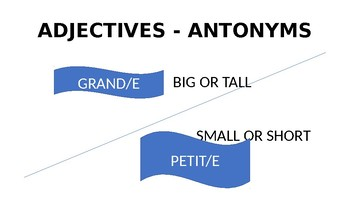 FRENCH ANTONYMS