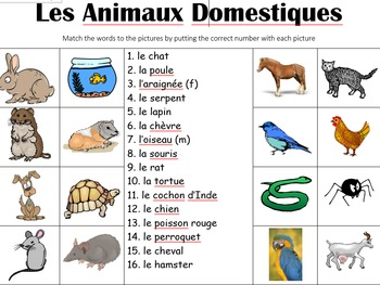 FRENCH BUNDLE - Picture Match -20 worksheets