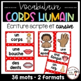 FRENCH Body Parts Word Wall Cards /  Le corps - Mots de vocabulaire