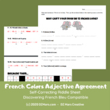 FRENCH - Color Adjective Agreement - Discovering French Bleu