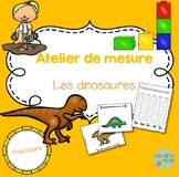 FRENCH Dinosaurs Mesurement activity/ Atelier Mesure Les d