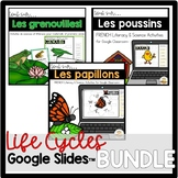 FRENCH Google Slides™ Life Cycles Bundle (Distance Learning)