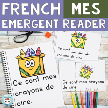 FRENCH Emergent Reader - Ce sont MES