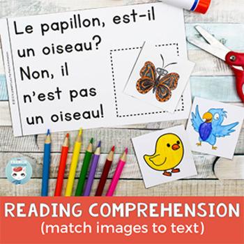 FRENCH Emergent Reader - Un OISEAU?