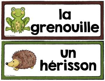 ANIMAUX DE LA FORÊT - 24 Mots-étiquettes (script et cursif)