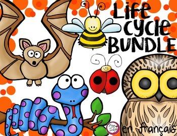 FRENCH Life Cycle Bundle
