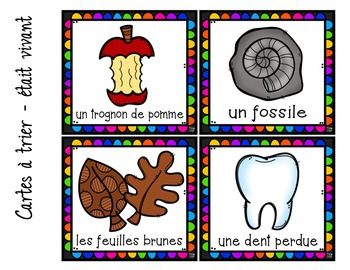 FRENCH Living & Non Living Things Sorting Cards