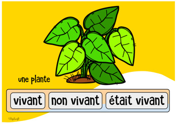 FRENCH BOOM CARDS • Living and Non Living Things