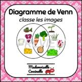 FRENCH Math Centres - Venn Diagram (sorting) / Classement