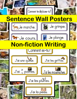 FRENCH NON-FICTION PARAGRAPH WRITING USING SENTENCE WALL RESOURCE