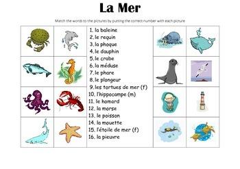 FRENCH - Picture Match - La Mer (the sea)