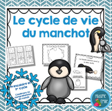 FRENCH {Penguin life cycle}/ Le cycle de vie du manchot