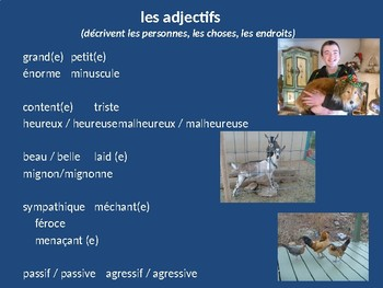 FRENCH PowerPoint - Les Adjectifs