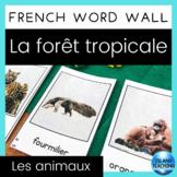 FRENCH Rainforest Animals Word Wall Cards (Mur de mots - la forêt tropicale)