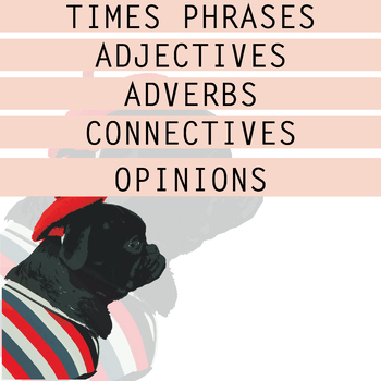 FRENCH LEARNING MAT - Vocab grammar and opinions - speaking oral activity / exam