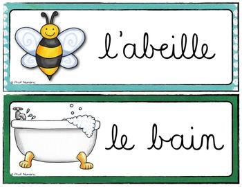 L'alphabet - 26 Mots-étiquettes (script et cursif)