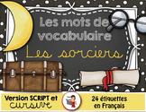 Mots de vocabulaire LES SORCIERS/24 affiches