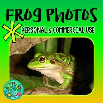 FROG Photos! Green & Golden Bell Frog FREEBIE