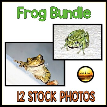 Frog Pictures BUNDLE AMPHIBIANS Pictures for TpT Sellers