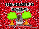 FROM MOLECULES TO ORGANISMS MS-LS1: PHOTOSYNTHESIS and CELLULAR RESPIRATION