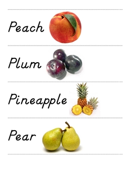 FRUIT Picture & Word Vocab Cards
