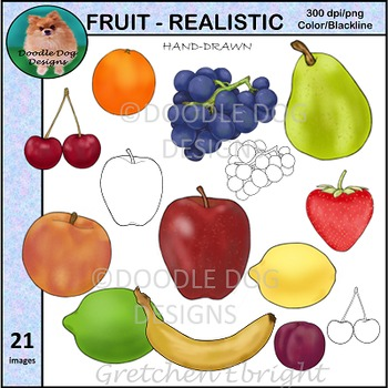 FRUIT - REALISTIC