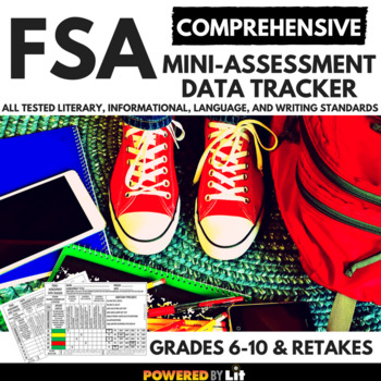 FSA COMPREHENSIVE Mini-Assessment Data Tracker