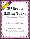FSA Editing Task Practice #3- 3rd & 4th Grade