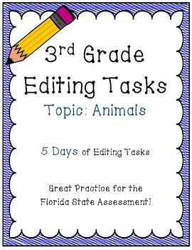FSA Editing Task Practice #2- 3rd & 4th Grade