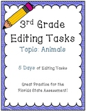 FSA Editing Task Practice #2- 3rd & 4th Grade