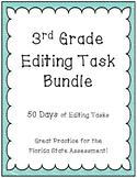 FSA Editing Task Practice- BUNDLE