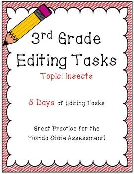 FSA Editing Task Practice #7- 3rd Grade