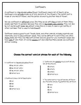3rd Grade Fsa Ela Editing Worksheets & Teaching Resources | TpT